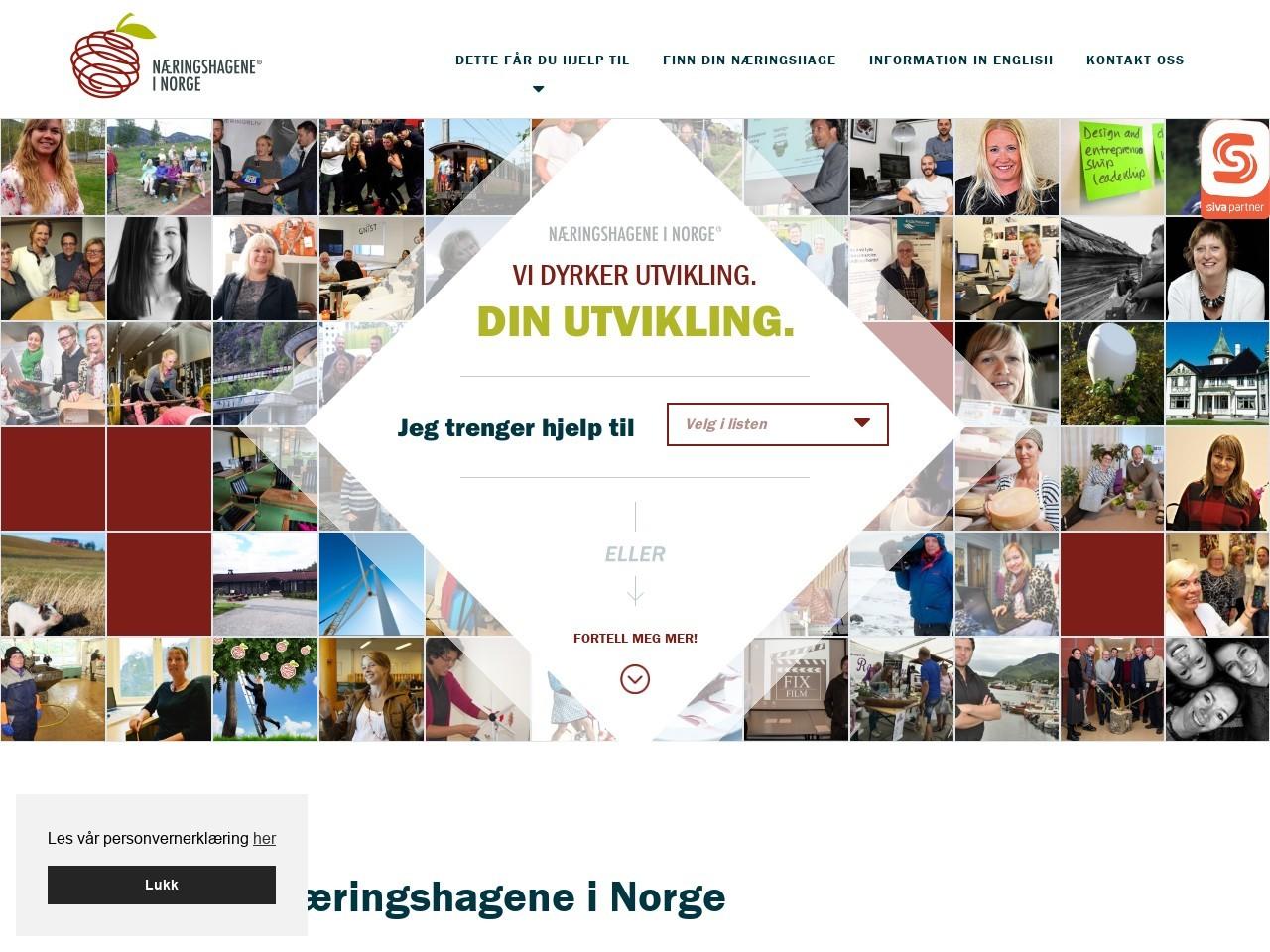 Skjermdump – næringshagene i Norge